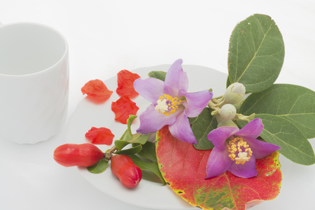 White plate and glass with colorful flowers and petals.