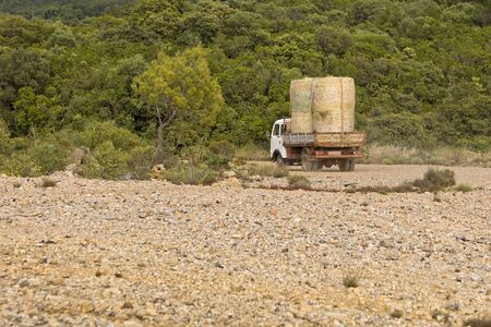 Old truck carries fodder rooftop in the countryside. Archivio Fotografico