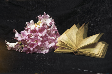 Bouquet of white and pink goblets with antique book. Romantic elaboration.