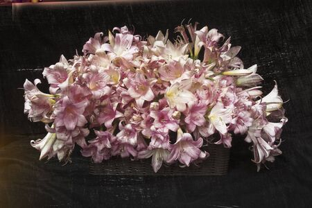 Vase filled with white and pink Lilies. Romantic elaboration.