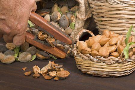 Almonds over a rustic wooden board. Rustic sack and basket. Nutcracker and almond oil. Almond flour. Archivio Fotografico