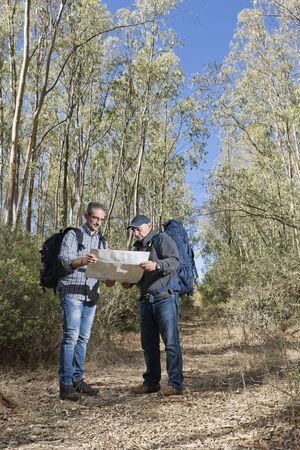 Hikers are stuck in the woods using the map to navigate.