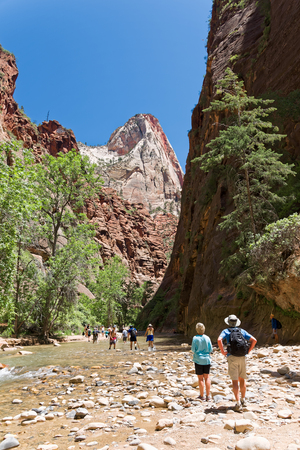 Springdale, Utah, USA - June 03, 2015: A group of tourists enter The Narrows, a section of Zion National Park in Utah (USA). The canyon narrows a few meters and hikers are forced to walk inside the river and on the slippery rocks to proceed.