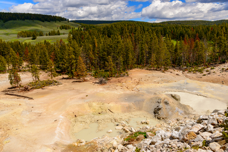 Along the Yellowstone River lie mud volcanoes and sulfur Caldron are mainly pots of mud and fumaroles because the area is located on a perched water system with little water available. Archivio Fotografico - 106235718
