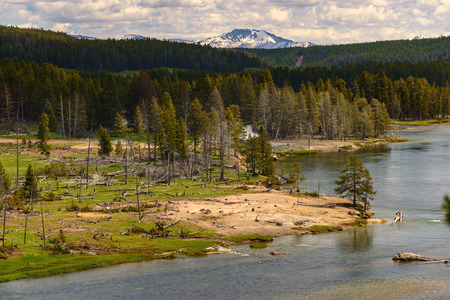 Landscape of the valley with view of the Yellowstone River inside the national park. Archivio Fotografico - 106235424