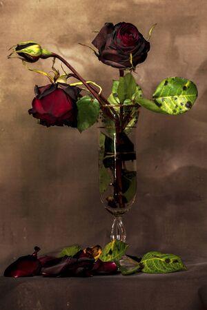 A bouquet of dried roses inside a glass, petals and fallen leaves. Foto de archivo