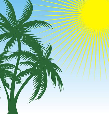 green palm   Vector