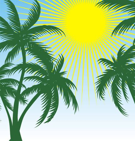 palm and sun  Stock Vector - 6522170