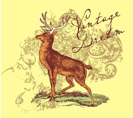 yellow deer Vector