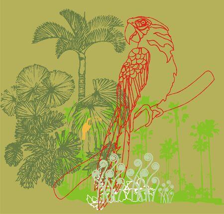 forest bird Illustration