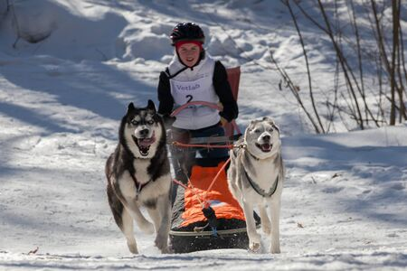 Voronezh / Russia - 23/02/2019: