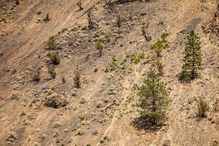 deforested: deforested mountain slope