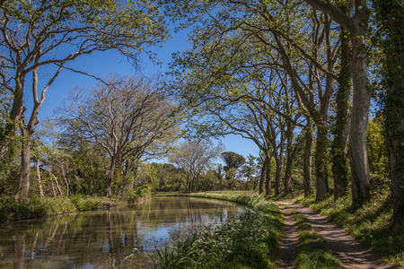 Canal du Midi in France between the green trees hunging over it with a walking path on one side Stock Photo