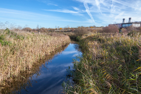 natural reserve of Rainham Marshes on a sunny day with blue sky