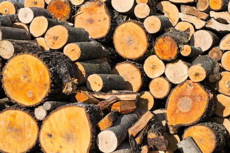 Photo of freshly chopped firewood, wooden background