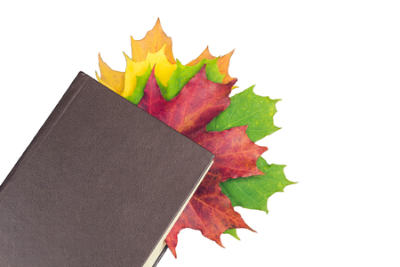 A book with colored leaves embedded in it isolated on a white background