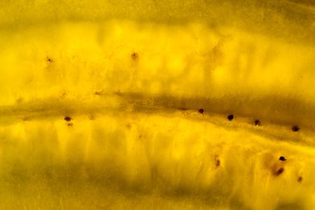 Photo texture of a cut yellow ripe banana, macro, close-up Stock Photo