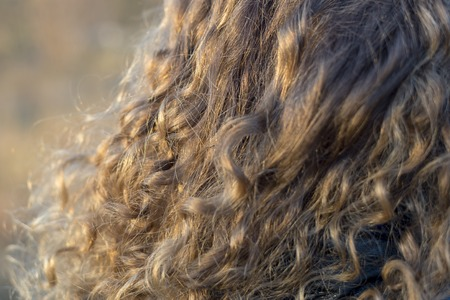 Photo of curls of light curly hair, fragment, close-up 스톡 콘텐츠 - 111567737