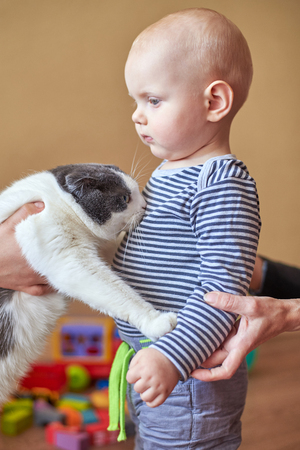 Mom introduces the cat with her little son, the boy is afraid of the animal Archivio Fotografico