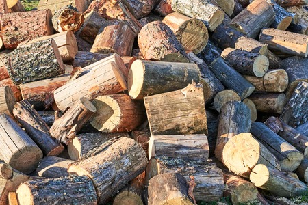 Largely chopped pine firewood, piled in a heap, close-up Reklamní fotografie