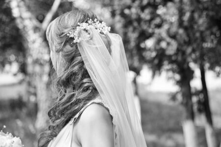 The back of a young bride with a veil in nature, black and white photo Reklamní fotografie