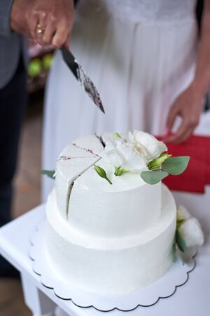 The bride and groom cut a large wedding cake together.
