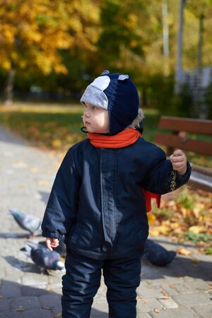 Little boy in overalls and a funny hat feeds pigeons wheat in the park in autumn. Stock Photo