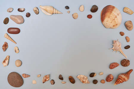 Seashells and stones on a blue background, summer concept, copy space. 免版税图像