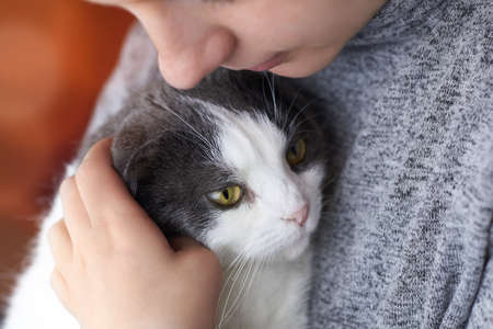 The woman gently hugs her cute fold cat, the theme of friendship with pets. Banco de Imagens