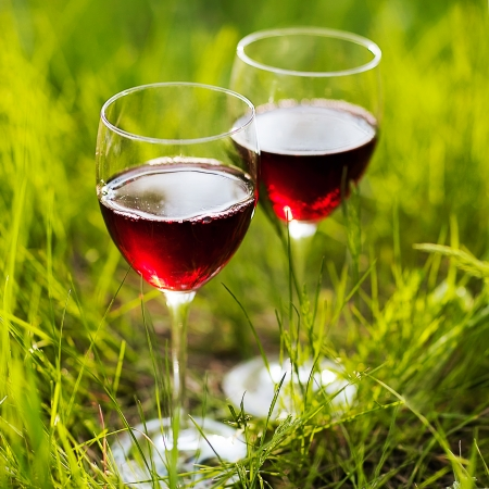 Two glasses of the  red wine in the garden