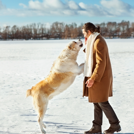 Man and central Asian shepherd playing with his dog outdoors Foto de archivo