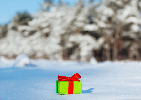 Gift in snow photo