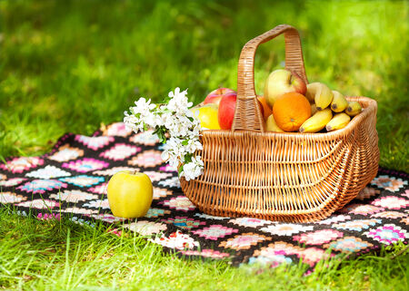 Healthy Organic fruits in the Basket. Spring. Picnic. photo