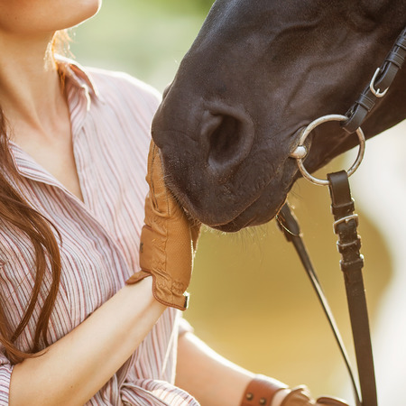 Beautiful woman and horse. Backlight. photo