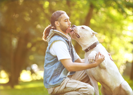 Man and Dogo Argentino walk in the park  Stock Photo