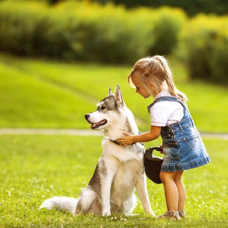 puppy love: ni�a en el parque de su casa con un perro Husky