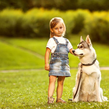 little girl in the park their home with a dog Husky photo