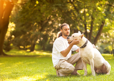 Man and Dogo Argentino walk in the park. Stock Photo