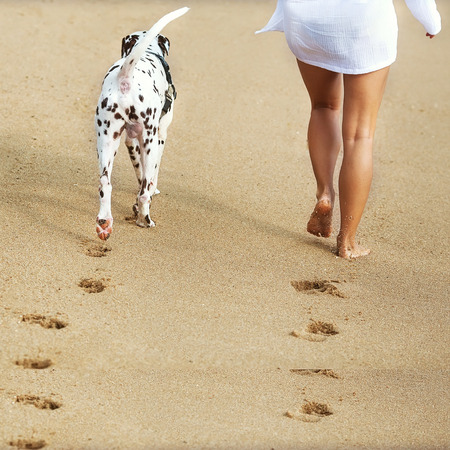 dog walking: young girl with a dog walking on the sea
