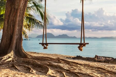 A wooden swing in a tree on the beach with beautiful views of the island photo