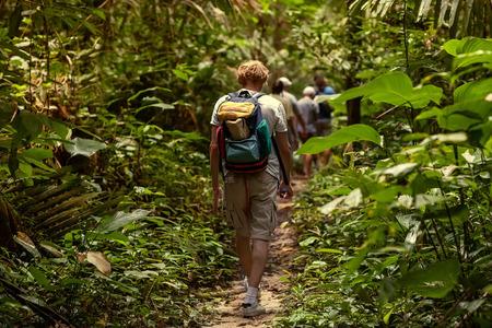 ジャングルの中を歩く観光客 写真素材