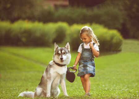 happy families: little girl in the park their home with a dog Husky