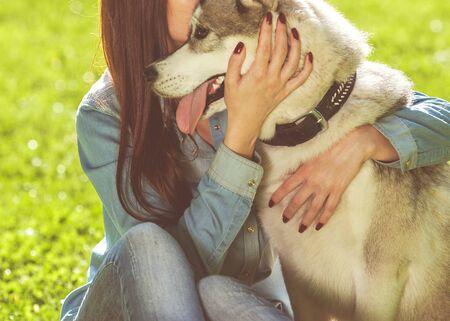 生活方式: 女孩在公園裡的家狗哈士奇 版權商用圖片