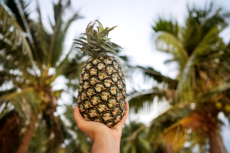 girl holding pineapple in hands near palm Stock Photo