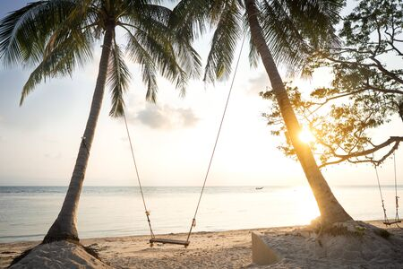 swing among tropical palm trees in Thailand at sunset Imagens