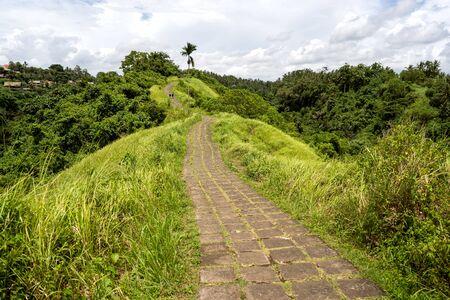 Campuhan Ridge Walk in Ubud in Bali 写真素材