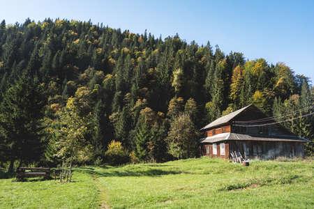 mountain house among huge pine trees