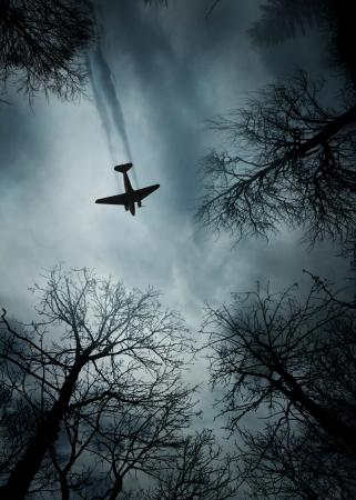 World War II era fighter plane in flight between trees
