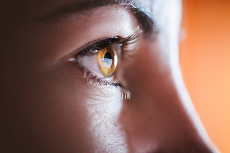 young eyes: Woman brown eye with long eyelashes Stock Photo