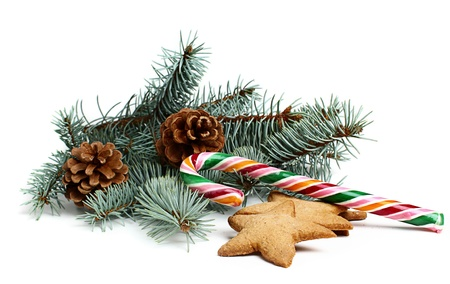 Christmas candy with a branch of spruce isolated on white background